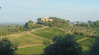 Le Tolfe, Siena